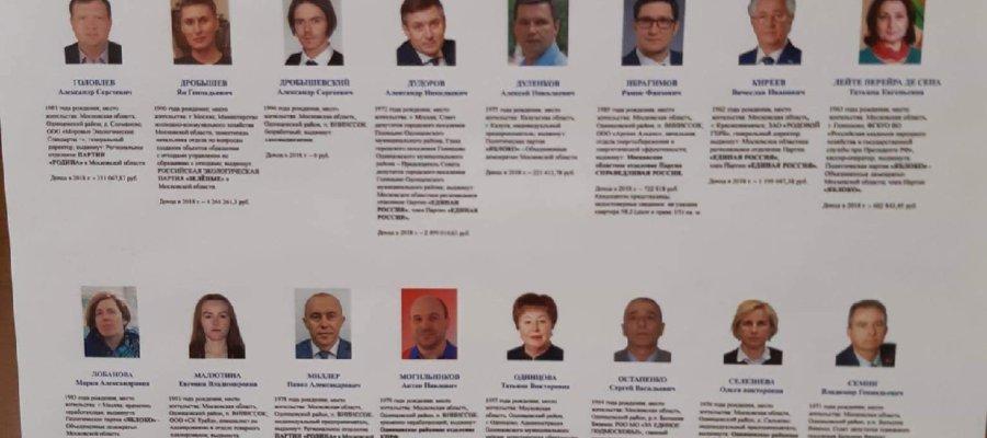в Одинцовском районе Московской области прошли выборы депутатов райсовета.