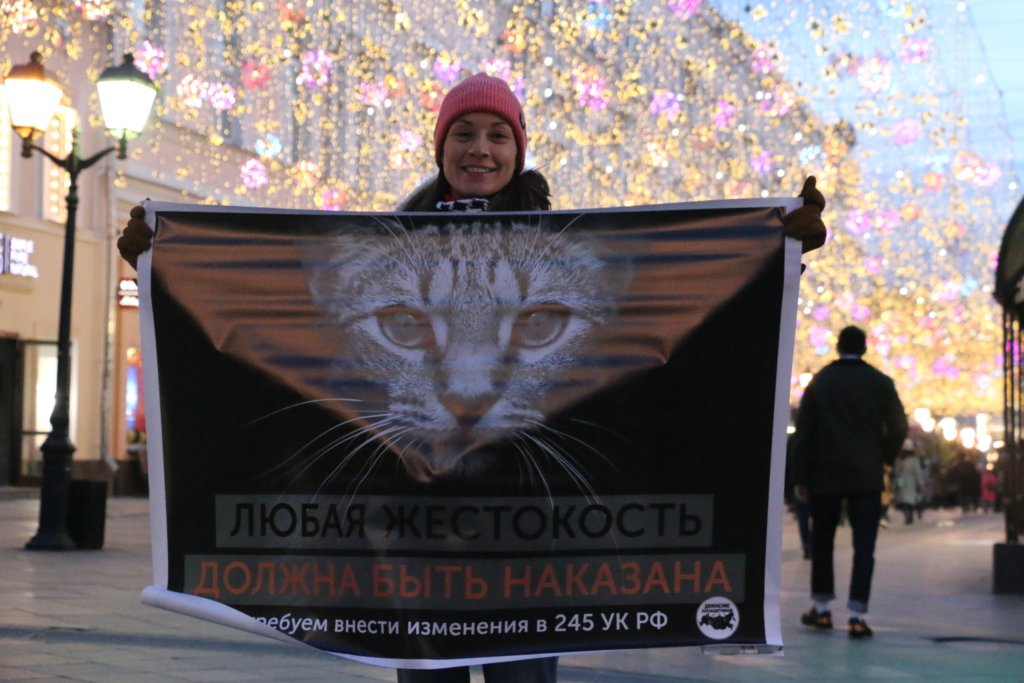 зоозащитники провели одиночные пикеты